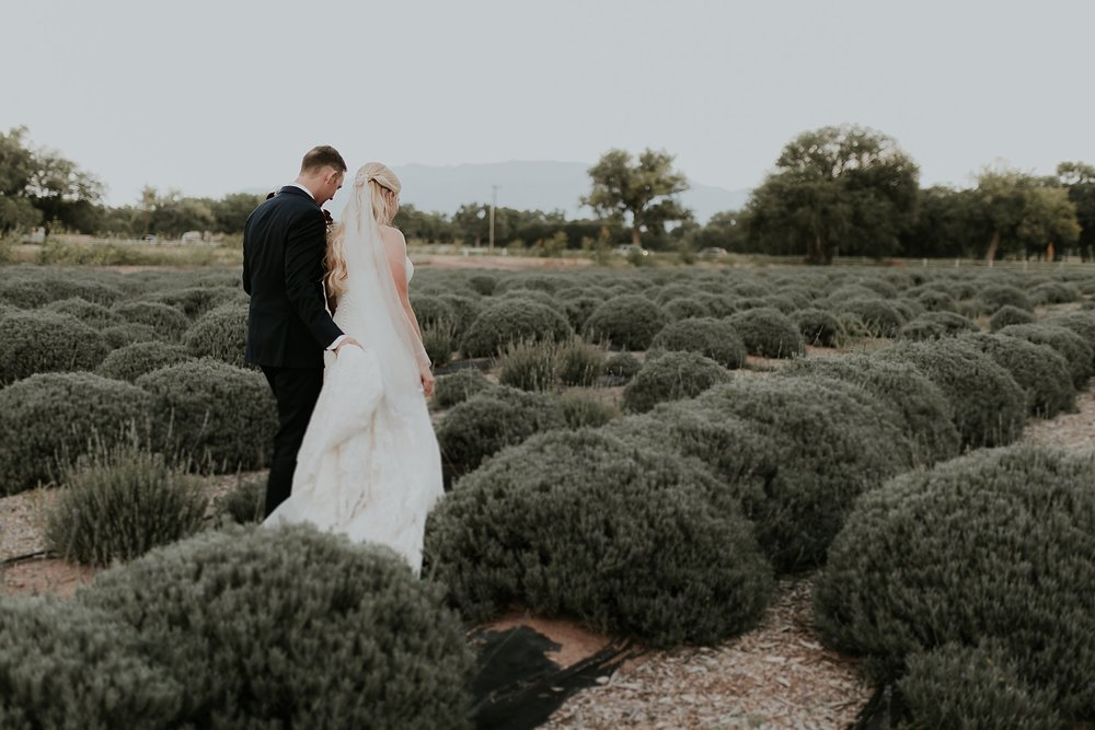 Alicia+lucia+photography+-+albuquerque+wedding+photographer+-+santa+fe+wedding+photography+-+new+mexico+wedding+photographer+-+los+poblanos+wedding+-+los+poblanos+fall+wedding_0070.jpg