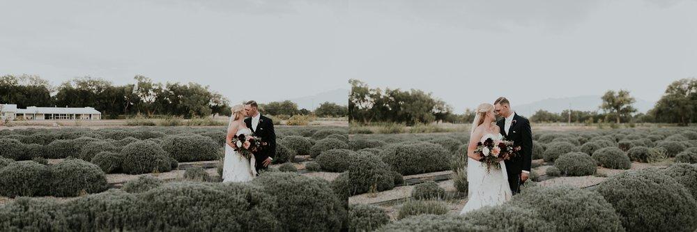 Alicia+lucia+photography+-+albuquerque+wedding+photographer+-+santa+fe+wedding+photography+-+new+mexico+wedding+photographer+-+los+poblanos+wedding+-+los+poblanos+fall+wedding_0074.jpg