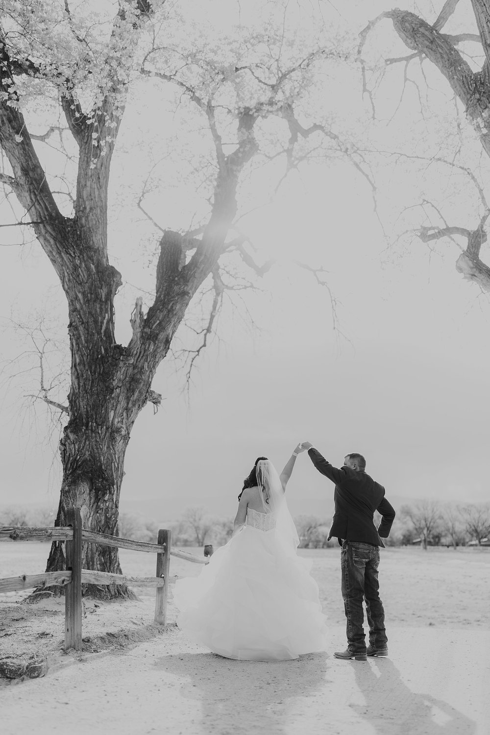 Alicia+lucia+photography+-+albuquerque+wedding+photographer+-+santa+fe+wedding+photography+-+new+mexico+wedding+photographer+-+new+mexico+engagement+-+la+mesita+ranch+wedding+-+la+mesita+ranch+spring+wedding_0065.jpg
