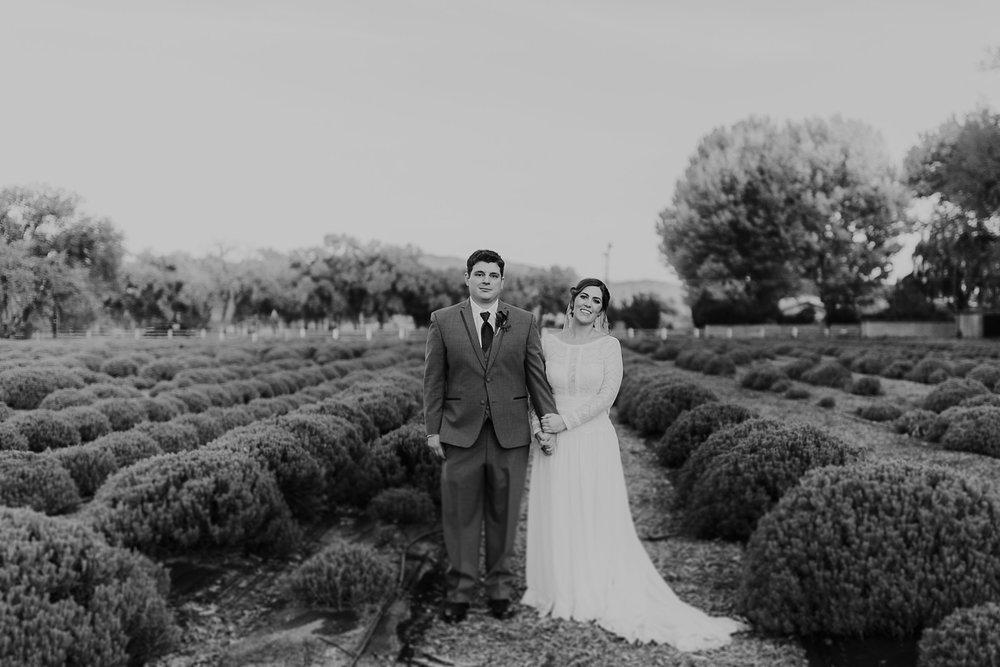 Alicia+lucia+photography+-+albuquerque+wedding+photographer+-+santa+fe+wedding+photography+-+new+mexico+wedding+photographer+-+albuquerque+fall+wedding+-+los+poblanos+albuquerque+-+los+poblanos+wedding+-+los+poblanos+fall+wedding_0095.jpg