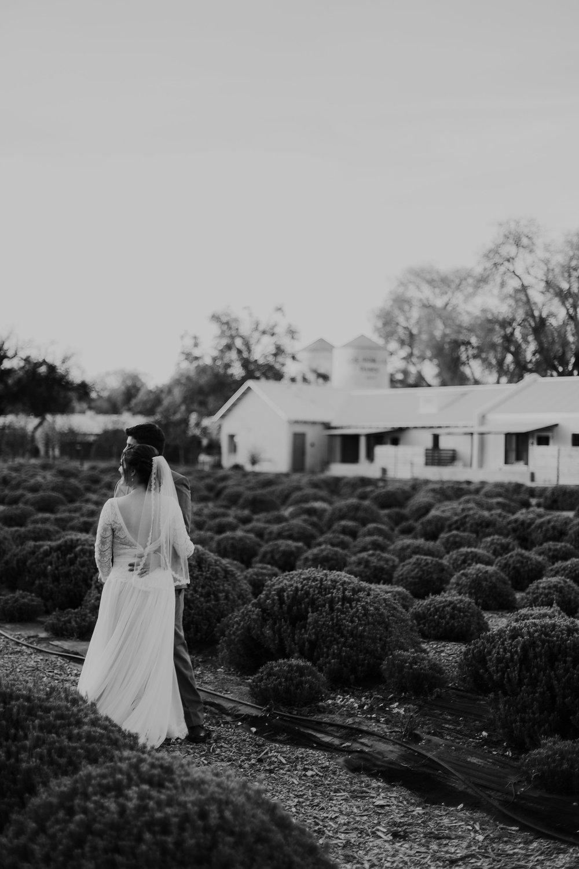 Alicia+lucia+photography+-+albuquerque+wedding+photographer+-+santa+fe+wedding+photography+-+new+mexico+wedding+photographer+-+albuquerque+fall+wedding+-+los+poblanos+albuquerque+-+los+poblanos+wedding+-+los+poblanos+fall+wedding_0094.jpg