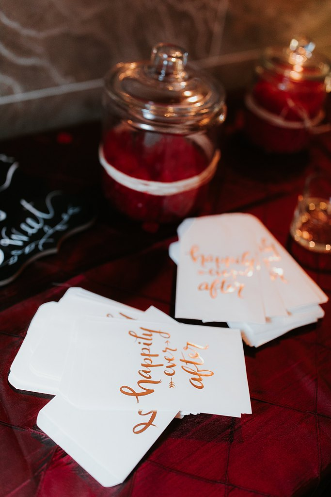 Alicia+lucia+photography+-+albuquerque+wedding+photographer+-+santa+fe+wedding+photography+-+new+mexico+wedding+photographer+-+albuquerque+winter+wedding+-+noahs+event+venue+wedding+-+noahs+event+venue+winter+wedding+-+new+mexico+winter+wedding_0097.jpg