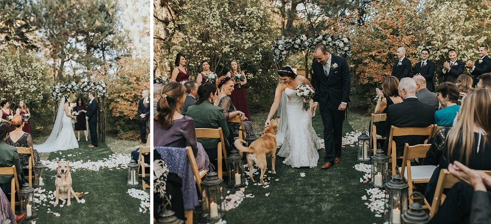Alicia+lucia+photography+-+albuquerque+wedding+photographer+-+santa+fe+wedding+photography+-+new+mexico+wedding+photographer+-+albuquerque+wedding+-+santa+fe+wedding+-+dogs+in+weddings+-+wedding+dogs+-+real+weddings_0005.jpg