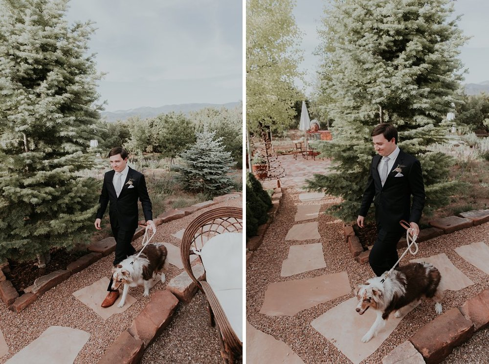 Alicia+lucia+photography+-+albuquerque+wedding+photographer+-+santa+fe+wedding+photography+-+new+mexico+wedding+photographer+-+albuquerque+wedding+-+santa+fe+wedding+-+dogs+in+weddings+-+wedding+dogs+-+real+weddings_0014.jpg