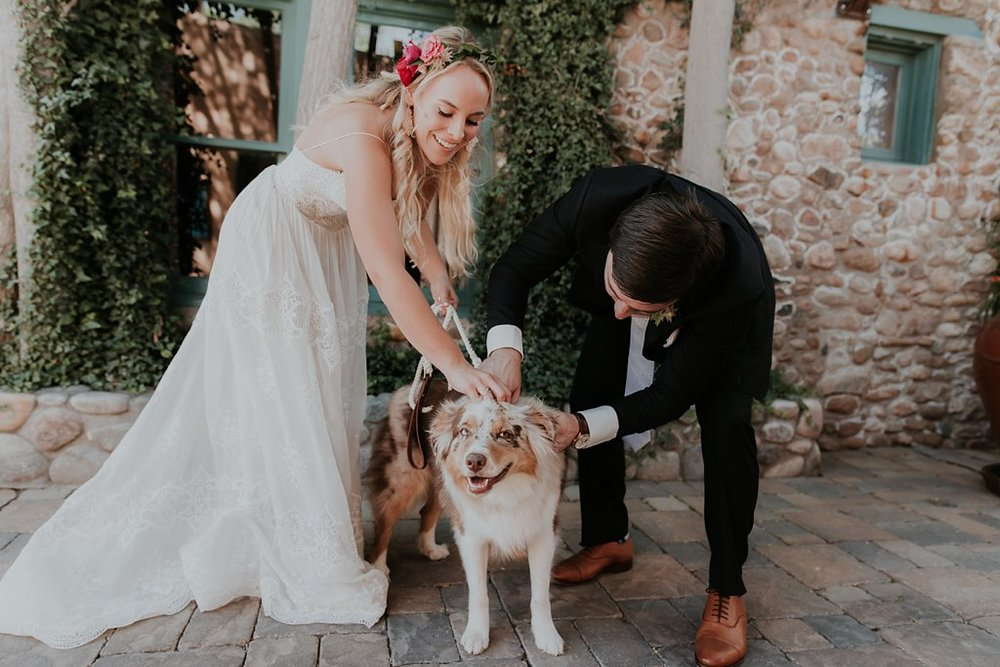 Alicia+lucia+photography+-+albuquerque+wedding+photographer+-+santa+fe+wedding+photography+-+new+mexico+wedding+photographer+-+albuquerque+wedding+-+santa+fe+wedding+-+dogs+in+weddings+-+wedding+dogs+-+real+weddings_0019.jpg