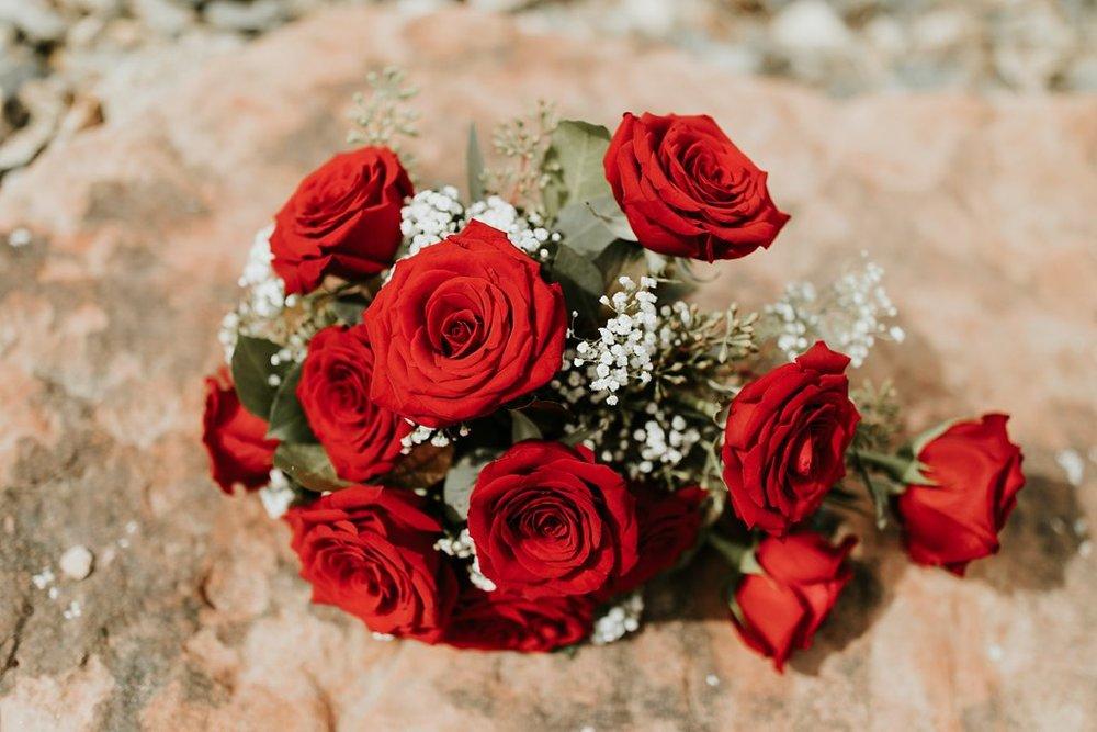 Alicia+lucia+photography+-+albuquerque+wedding+photographer+-+santa+fe+wedding+photography+-+new+mexico+wedding+photographer+-+albuquerque+wedding+-+albuquerque+winter+wedding_0001.jpg