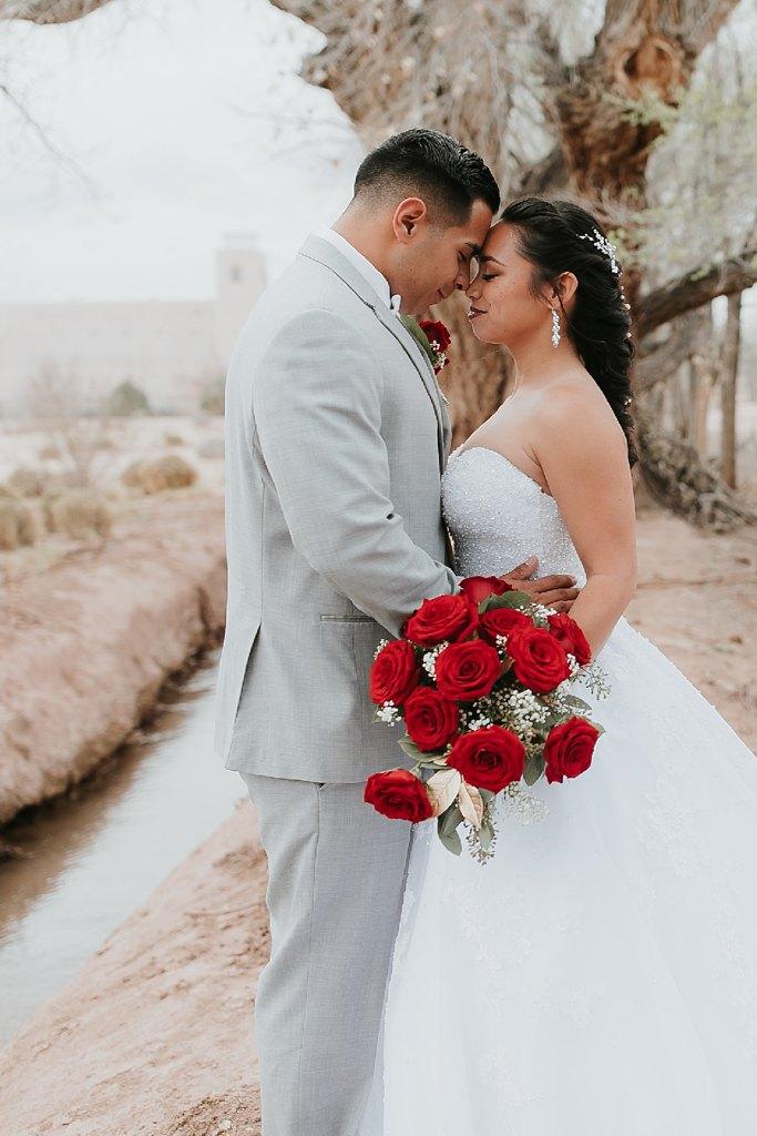 Alicia+lucia+photography+-+albuquerque+wedding+photographer+-+santa+fe+wedding+photography+-+new+mexico+wedding+photographer+-+albuquerque+wedding+-+albuquerque+winter+wedding_0047.jpg