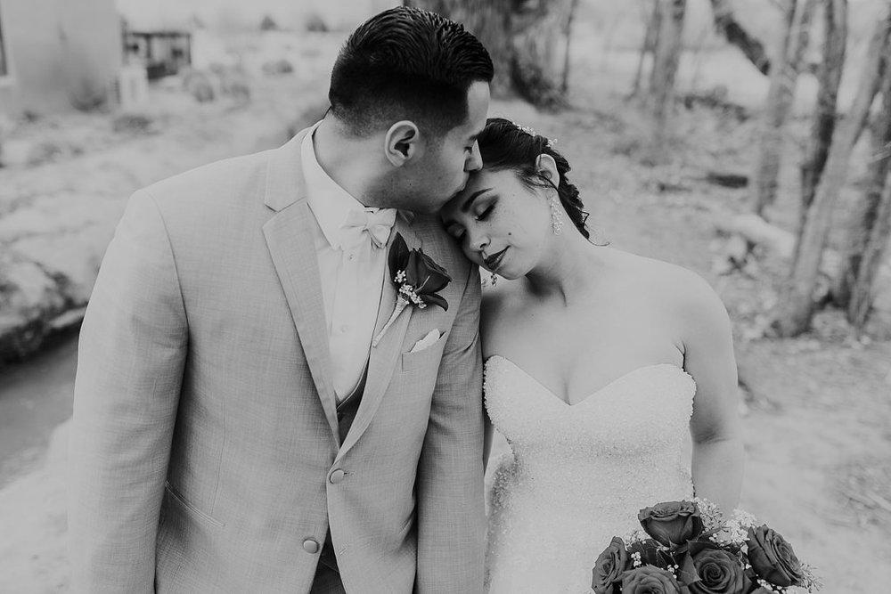 Alicia+lucia+photography+-+albuquerque+wedding+photographer+-+santa+fe+wedding+photography+-+new+mexico+wedding+photographer+-+albuquerque+wedding+-+albuquerque+winter+wedding_0051.jpg