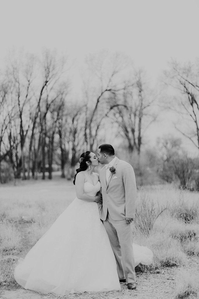 Alicia+lucia+photography+-+albuquerque+wedding+photographer+-+santa+fe+wedding+photography+-+new+mexico+wedding+photographer+-+albuquerque+wedding+-+albuquerque+winter+wedding_0053.jpg