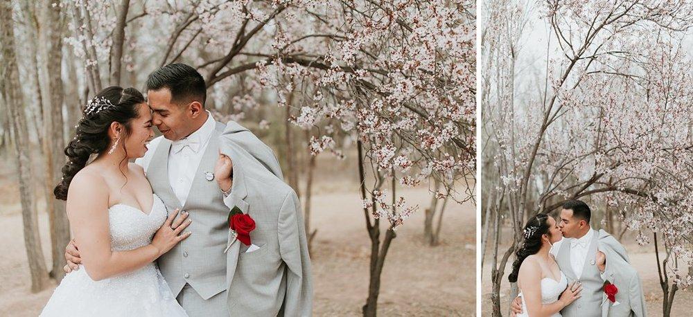 Alicia+lucia+photography+-+albuquerque+wedding+photographer+-+santa+fe+wedding+photography+-+new+mexico+wedding+photographer+-+albuquerque+wedding+-+albuquerque+winter+wedding_0062.jpg