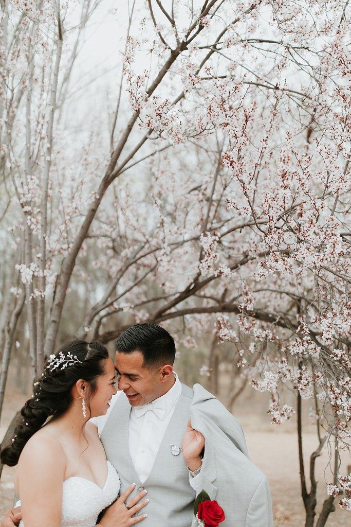 Alicia+lucia+photography+-+albuquerque+wedding+photographer+-+santa+fe+wedding+photography+-+new+mexico+wedding+photographer+-+albuquerque+wedding+-+albuquerque+winter+wedding_0063.jpg
