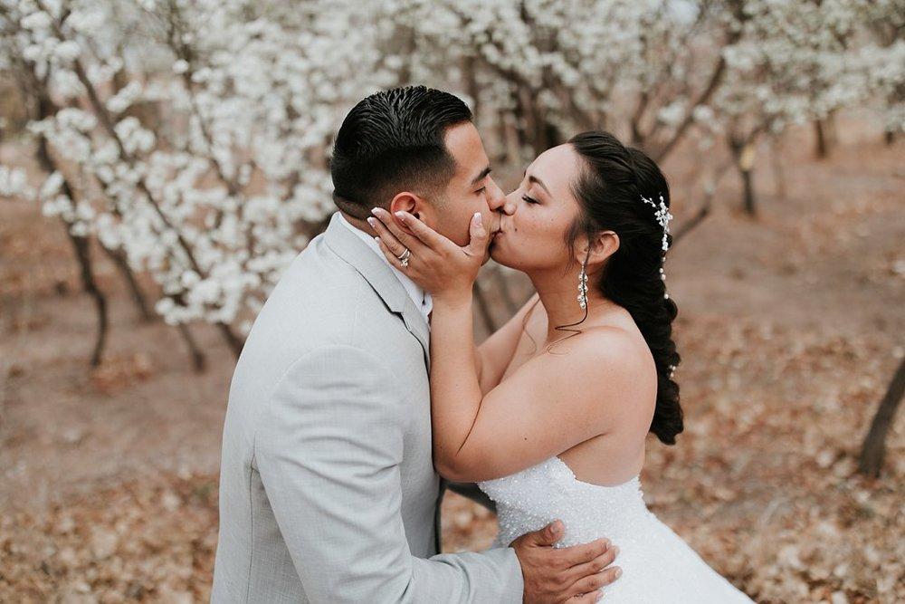 Alicia+lucia+photography+-+albuquerque+wedding+photographer+-+santa+fe+wedding+photography+-+new+mexico+wedding+photographer+-+albuquerque+wedding+-+albuquerque+winter+wedding_0071.jpg