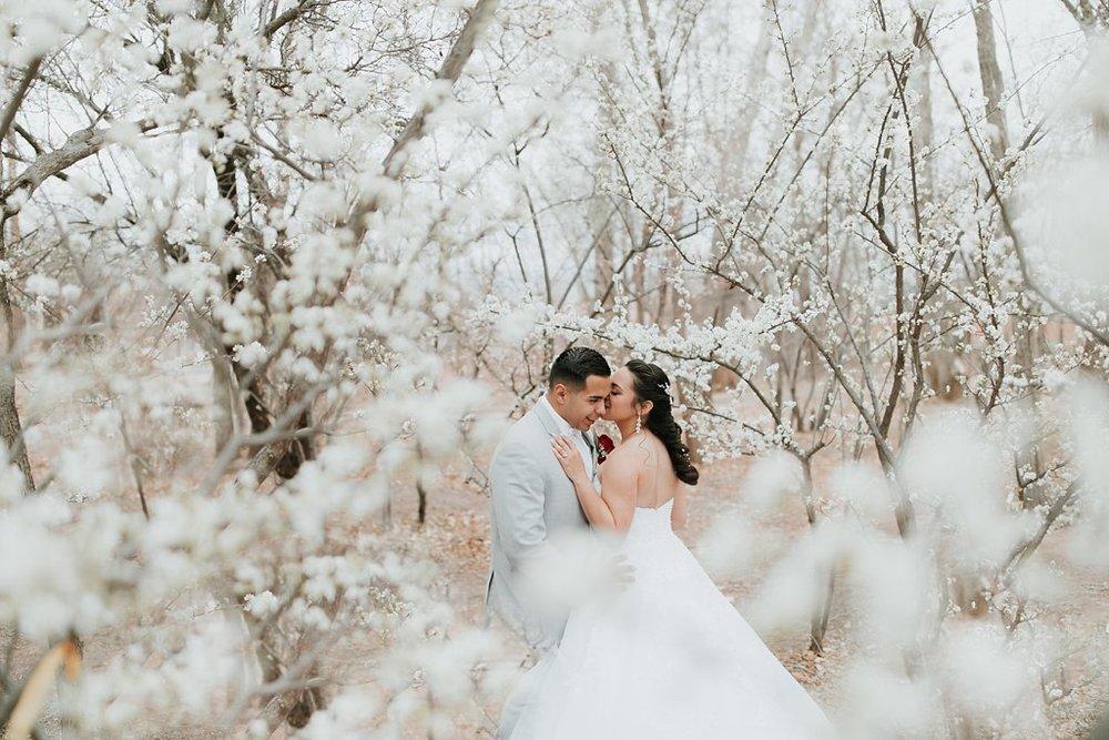 Alicia+lucia+photography+-+albuquerque+wedding+photographer+-+santa+fe+wedding+photography+-+new+mexico+wedding+photographer+-+albuquerque+wedding+-+albuquerque+winter+wedding_0072.jpg