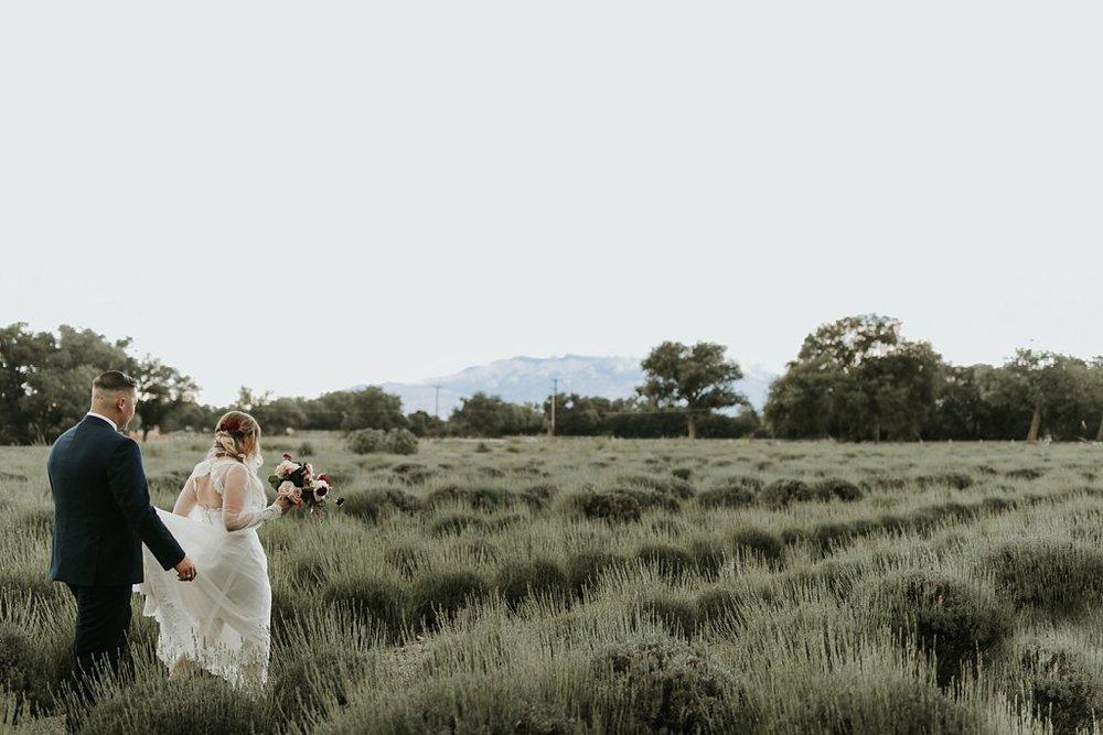 Alicia+lucia+photography+-+albuquerque+wedding+photographer+-+santa+fe+wedding+photography+-+new+mexico+wedding+photographer+-+los+poblanos+wedding+-+los+poblanos+summer+wedding+-+rainy+los+poblanos+wedding_0098.jpg