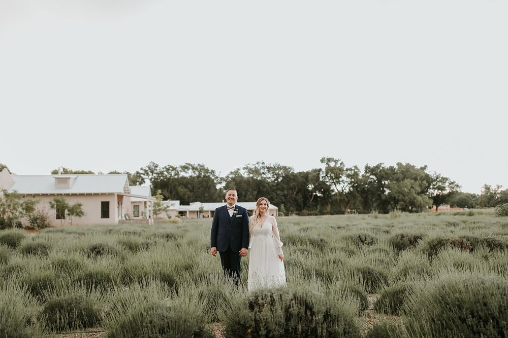 Alicia+lucia+photography+-+albuquerque+wedding+photographer+-+santa+fe+wedding+photography+-+new+mexico+wedding+photographer+-+los+poblanos+wedding+-+los+poblanos+summer+wedding+-+rainy+los+poblanos+wedding_0102.jpg