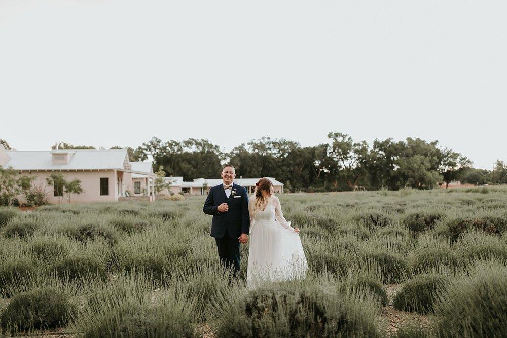 Alicia+lucia+photography+-+albuquerque+wedding+photographer+-+santa+fe+wedding+photography+-+new+mexico+wedding+photographer+-+los+poblanos+wedding+-+los+poblanos+summer+wedding+-+rainy+los+poblanos+wedding_0103.jpg