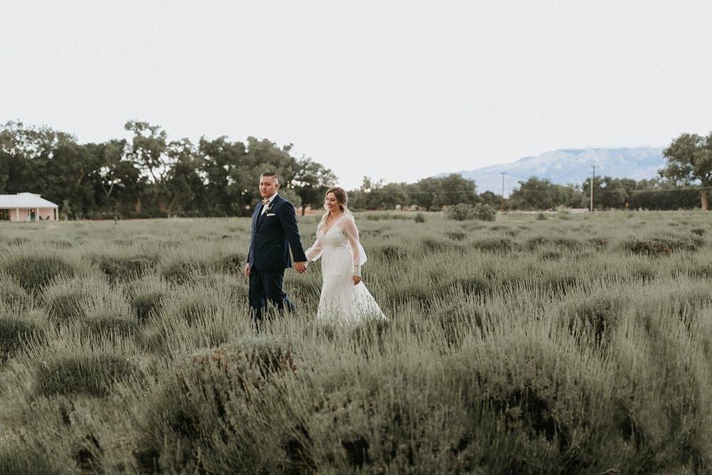 Alicia+lucia+photography+-+albuquerque+wedding+photographer+-+santa+fe+wedding+photography+-+new+mexico+wedding+photographer+-+los+poblanos+wedding+-+los+poblanos+summer+wedding+-+rainy+los+poblanos+wedding_0104.jpg