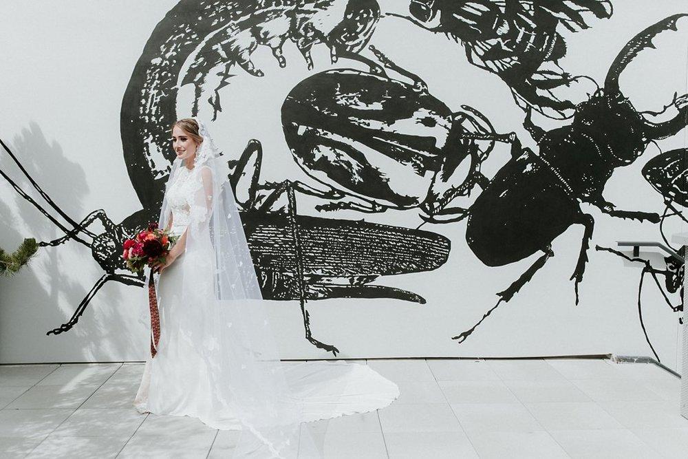 Alicia+lucia+photography+-+albuquerque+wedding+photographer+-+santa+fe+wedding+photography+-+new+mexico+wedding+photographer+-+new+mexico+wedding+-+santa+fe+wedding+-+site+santa+fe+wedding_0035.jpg