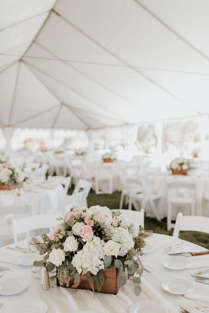 Alicia+lucia+photography+-+albuquerque+wedding+photographer+-+santa+fe+wedding+photography+-+new+mexico+wedding+photographer+-+new+mexico+wedding+-+prairie+star+wedding+-+santa+ana+star+wedding_0081.jpg