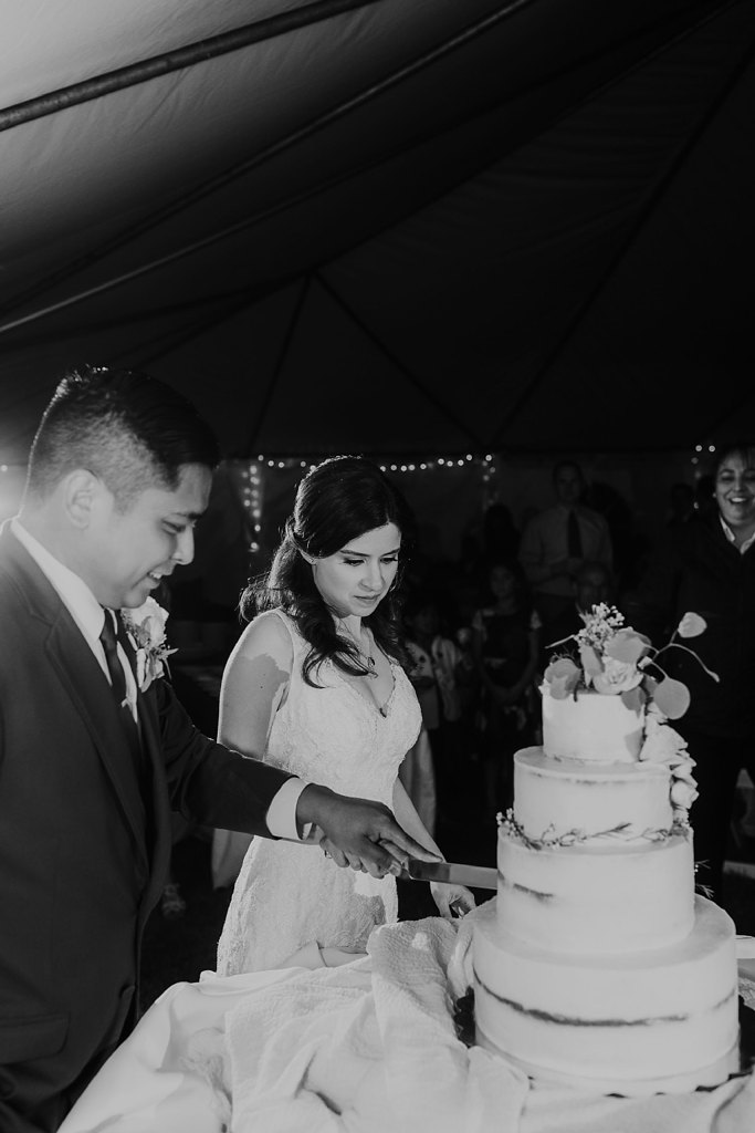 Alicia+lucia+photography+-+albuquerque+wedding+photographer+-+santa+fe+wedding+photography+-+new+mexico+wedding+photographer+-+new+mexico+wedding+-+prairie+star+wedding+-+santa+ana+star+wedding_0105.jpg