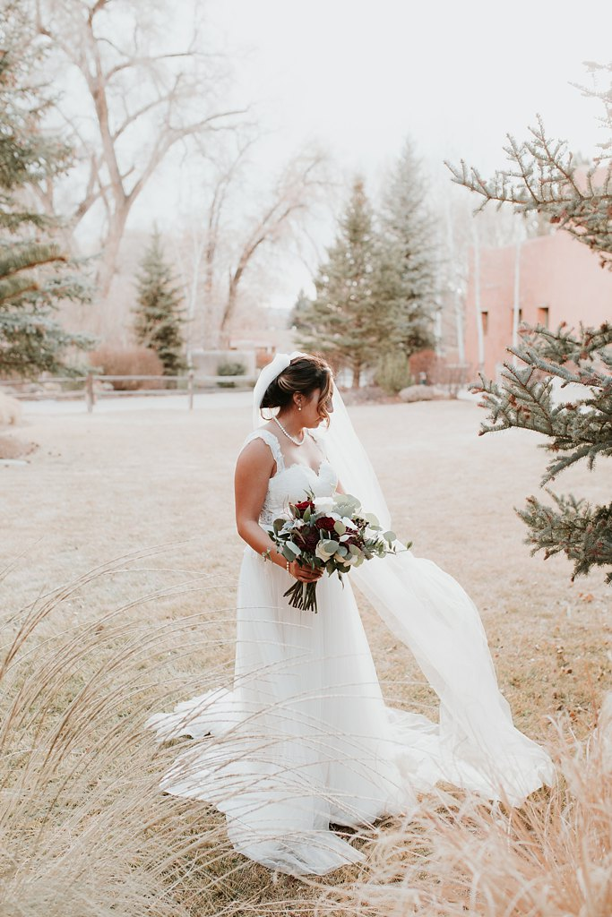 Alicia+lucia+photography+-+albuquerque+wedding+photographer+-+santa+fe+wedding+photography+-+new+mexico+wedding+photographer+-+new+mexico+wedding+-+winter+wedding+-+winter+wedding+gowns_0063.jpg