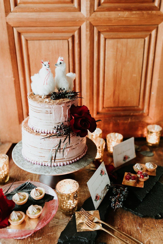 Alicia+lucia+photography+-+albuquerque+wedding+photographer+-+santa+fe+wedding+photography+-+new+mexico+wedding+photographer+-+new+mexico+wedding+-+wedding+-+winter+wedding+-+wedding+reception+-+winter+wedding+reception_0039.jpg