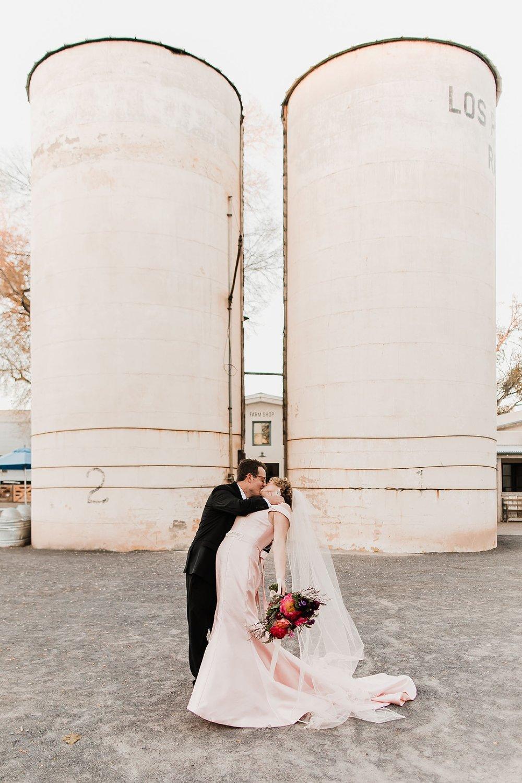 Alicia+lucia+photography+-+albuquerque+wedding+photographer+-+santa+fe+wedding+photography+-+new+mexico+wedding+photographer+-+new+mexico+wedding+-+albuquerque+wedding+-+los+poblanos+wedding+-+fall+wedding_0053.jpg
