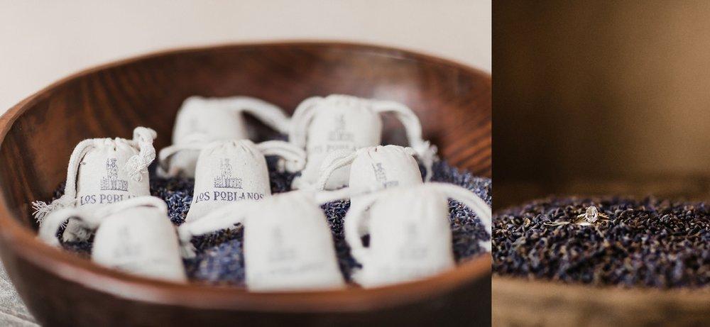 Alicia+lucia+photography+-+albuquerque+wedding+photographer+-+santa+fe+wedding+photography+-+new+mexico+wedding+photographer+-+new+mexico+wedding+-+albuquerque+wedding+-+rocky+mountain+bride+-+los+poblanos+wedding_0059.jpg