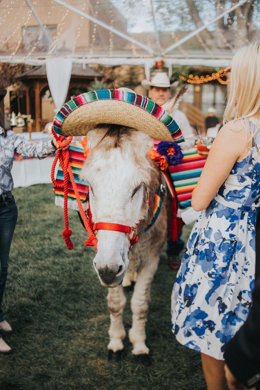 Alicia+lucia+photography+-+albuquerque+wedding+photographer+-+santa+fe+wedding+photography+-+new+mexico+wedding+photographer+-+new+mexico+wedding+-+santa+fe+wedding+-+albuquerque+wedding+-+southwest+wedding+traditions_0033.jpg