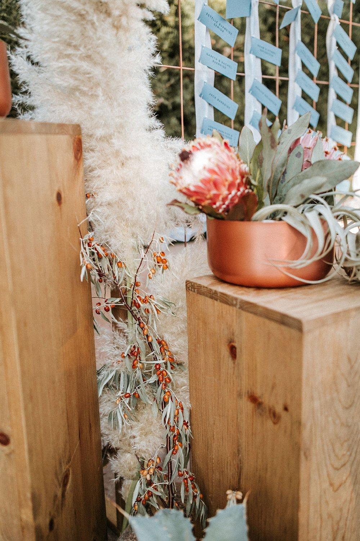 Alicia+lucia+photography+-+albuquerque+wedding+photographer+-+santa+fe+wedding+photography+-+new+mexico+wedding+photographer+-+new+mexico+wedding+-+santa+fe+wedding+-+albuquerque+wedding+-+wedding+florist+-+new+mexico+wedding+florist_0015.jpg