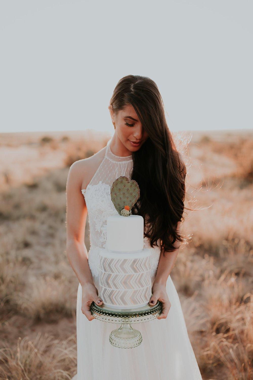 Alicia+lucia+photography+-+albuquerque+wedding+photographer+-+santa+fe+wedding+photography+-+new+mexico+wedding+photographer+-+wedding+reception+-+wedding+cake+-+wedding+sweets+-+maggies+cakes_0021.jpg
