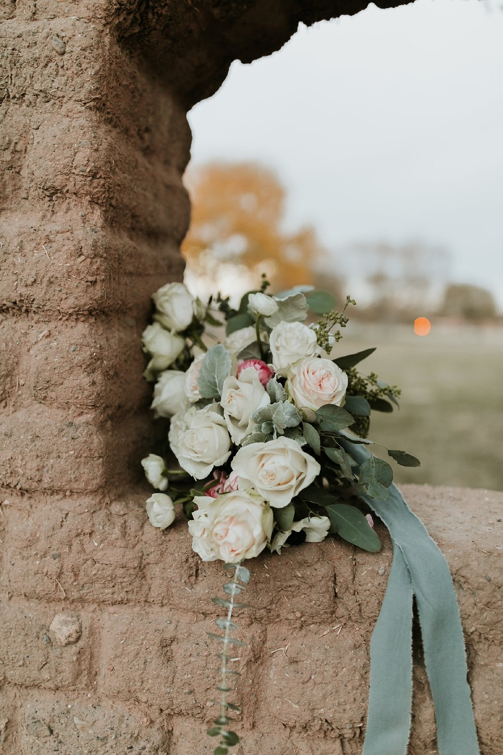 Alicia+lucia+photography+-+albuquerque+wedding+photographer+-+santa+fe+wedding+photography+-+new+mexico+wedding+photographer+-+bridal+shoot+-+styled+bridal+shoot+-+southwest+bride_0023.jpg
