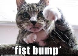 fist_bump_lolcat_kitteh.jpg