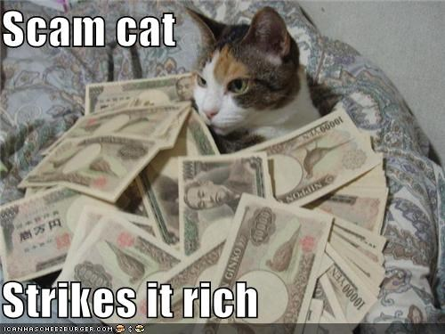 DON'T GIVE SCAM CAT YOUR MONEY!
