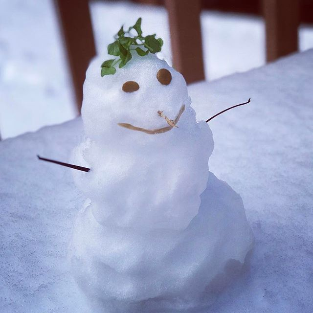 Happy Snow Day! #snow #snowday #snowman