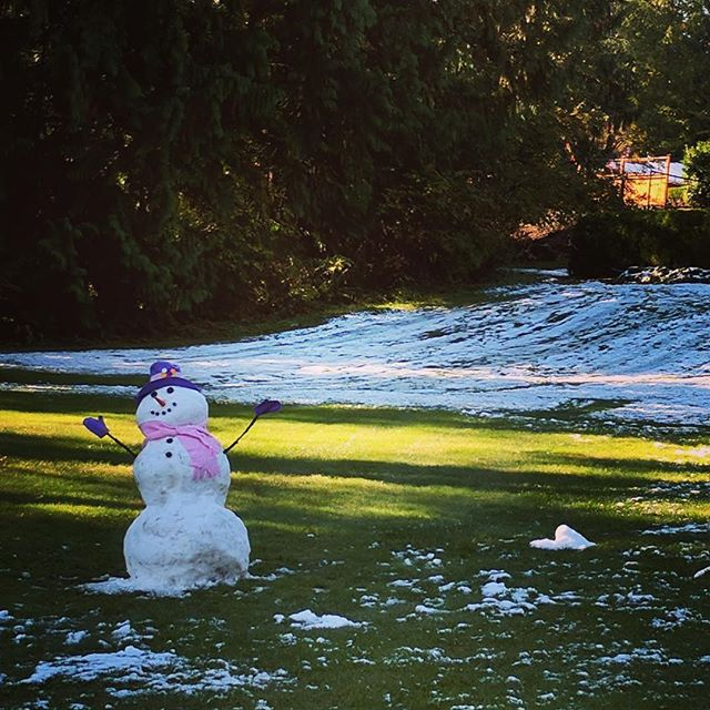 Resilient #SnowLady! Still standing! #Seattle #SnowWoman #SnowDay