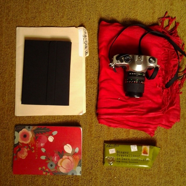 Here's what was in my bag all week: a field notebook, a folder of study information sheets, a camera, a scarf, the iPad. That's it, and it's all I needed.