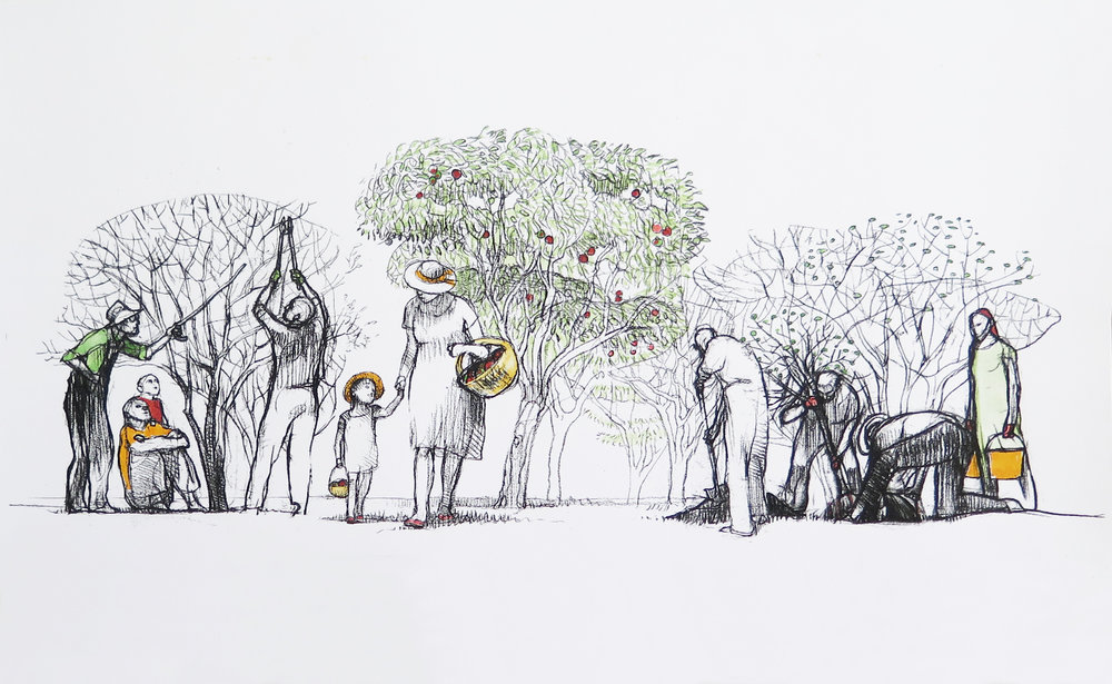 Illustration of the initial vision of the Bloomington Community Orchard by Mark Blaney.