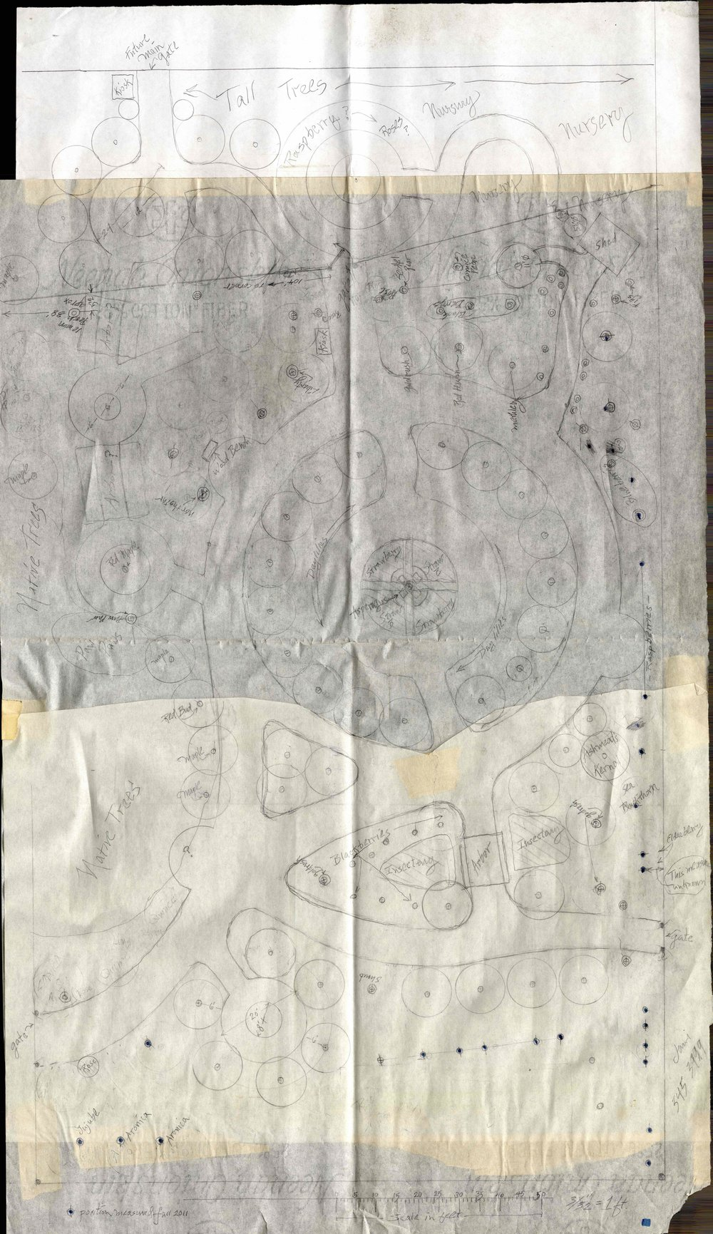 Though a bit difficult to see, this map on tracing paper appears to be one of the earliest takes at organizing the site, drawn by Jack, a local artist who joined the project at one of the first callout meetings. Jack drafted the design and anticipated more of a back-and-forth as the community came to a shared vision. He was surprised when the design was largely taken up and conversation moved to what was attainable in a first phase and what cultivars would work best.  From its Jack's draft, the site centered on building space for community rather than prioritizing maximum production of fruit. The layout flows, to move individuals throughout the space, but also features multiple stopping points—circles scattered through are designed to hold groups of varying sizes for meetings, picnics, or quiet reflection.  The northern edge of the orchard is at the top of the image; this is consistent throughout.