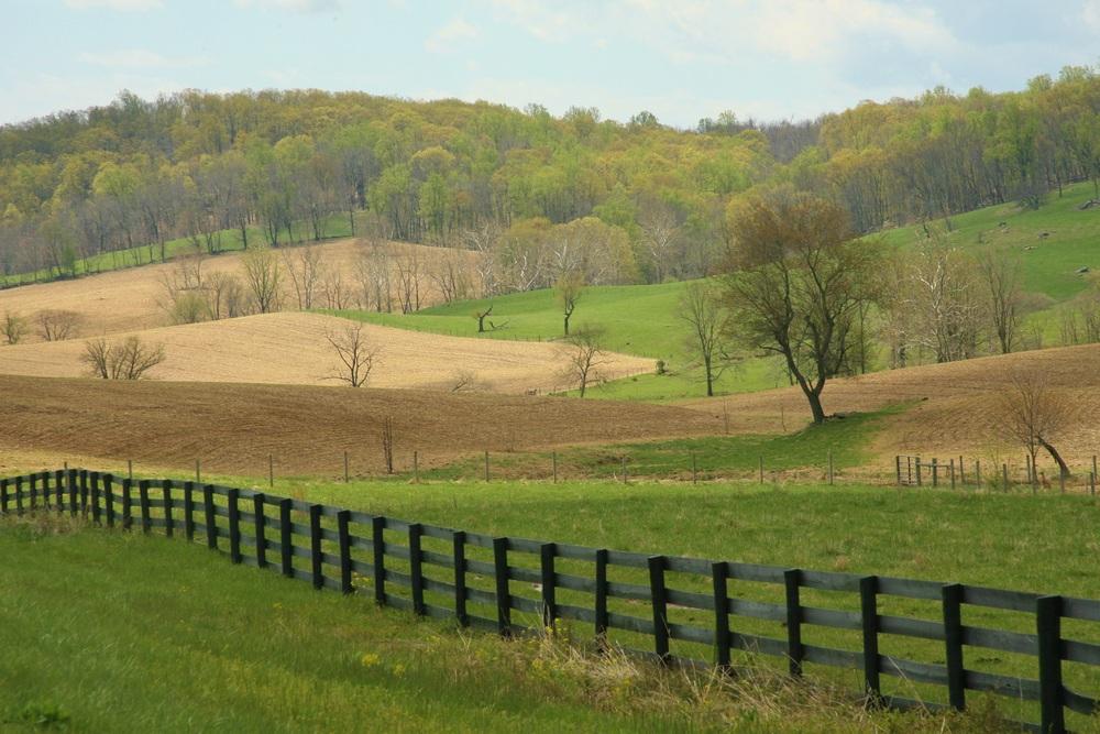 virginia country properties