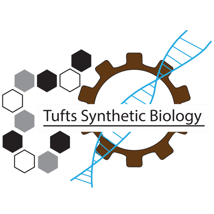 Tufts Synthetic Biology