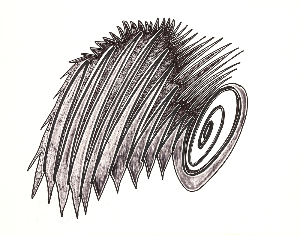 """Spikes and Spiral   marker on paper  11"""" x 14""""  2015"""
