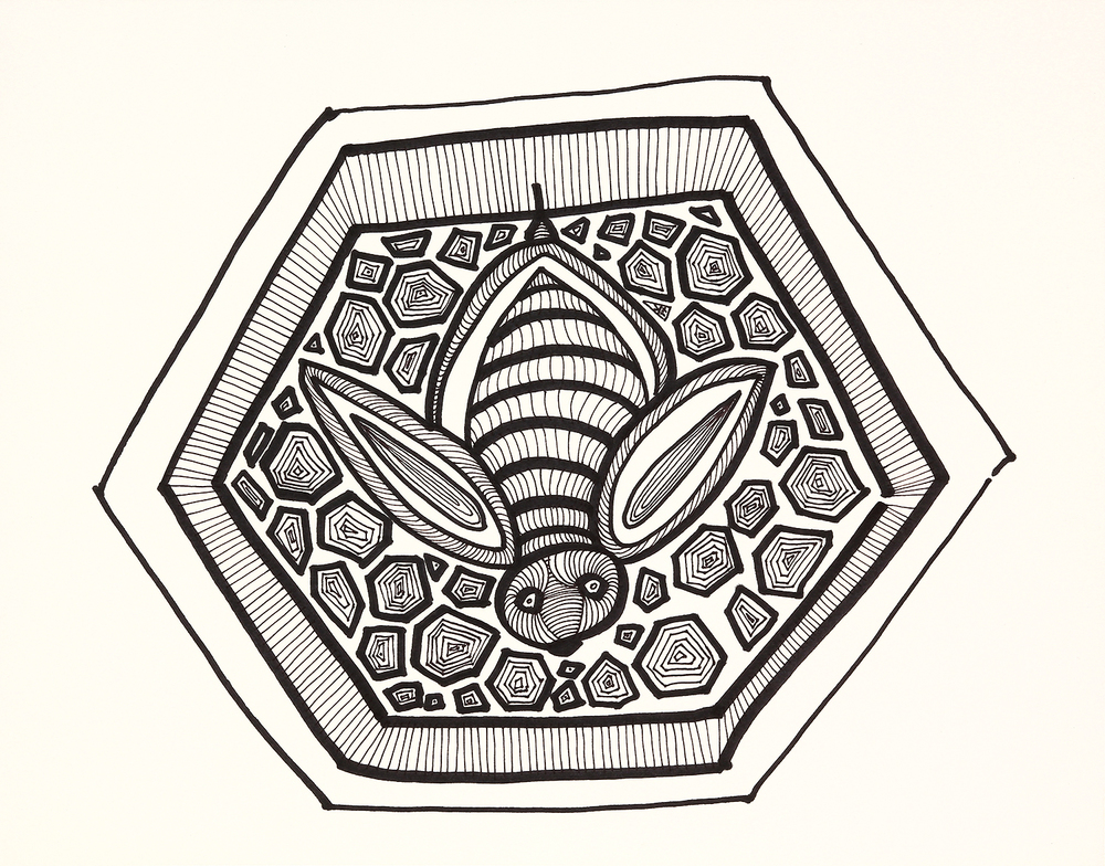 "Bee in Honeycomb    marker on paper   11"" x 14""   2014"