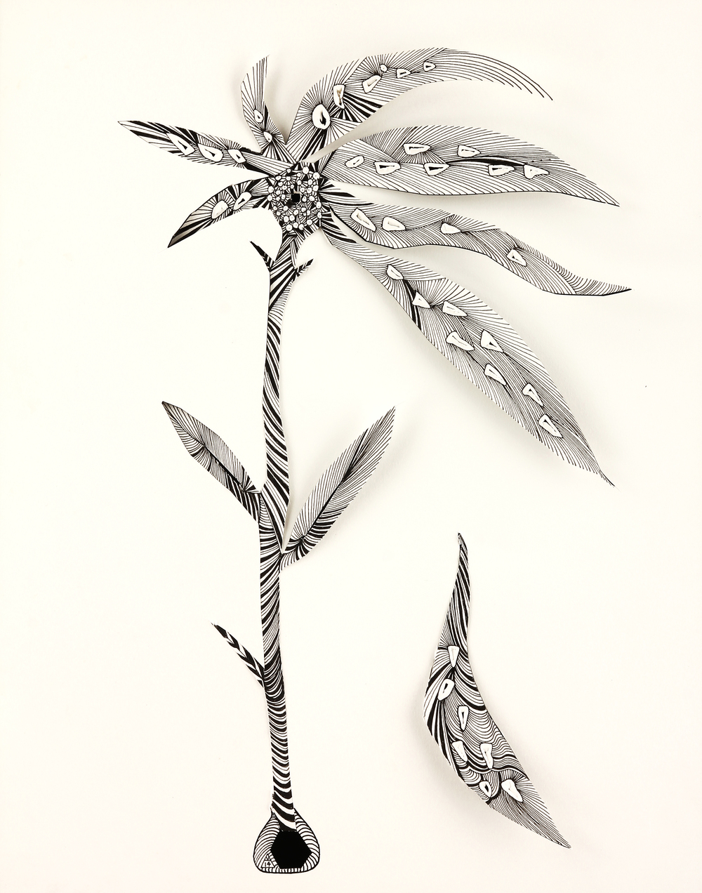 """Medicinal Plant  ink on paper, cut out, punched holes  14"""" x 11""""  2014"""