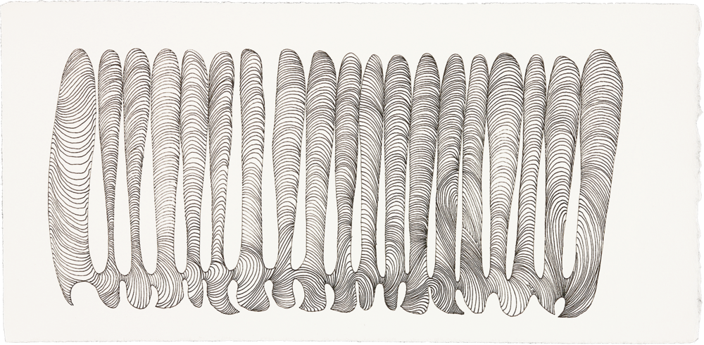 """Finger Feelers  ink on paper  6"""" x 13""""  2014"""