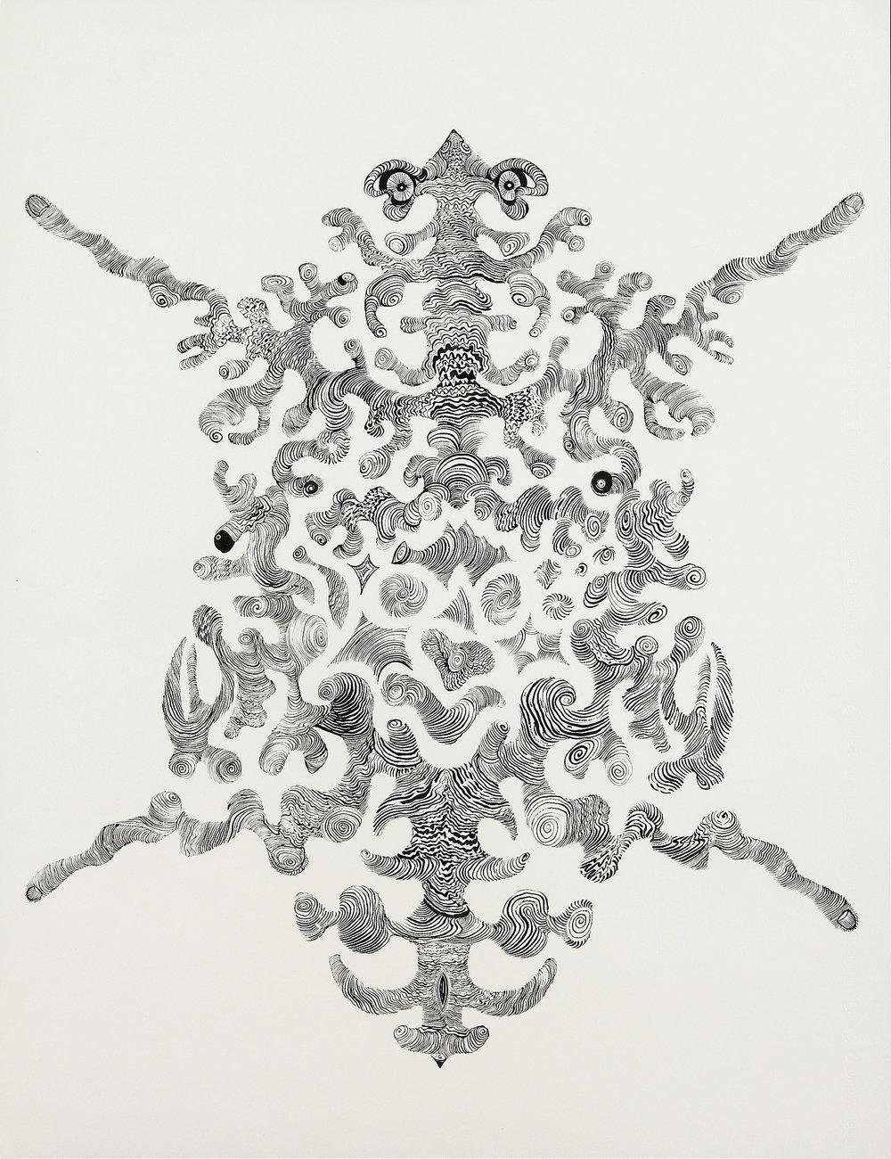 Basil Ganglia  sumi ink on paper  31x25in. 2016  (Brain Study Series)