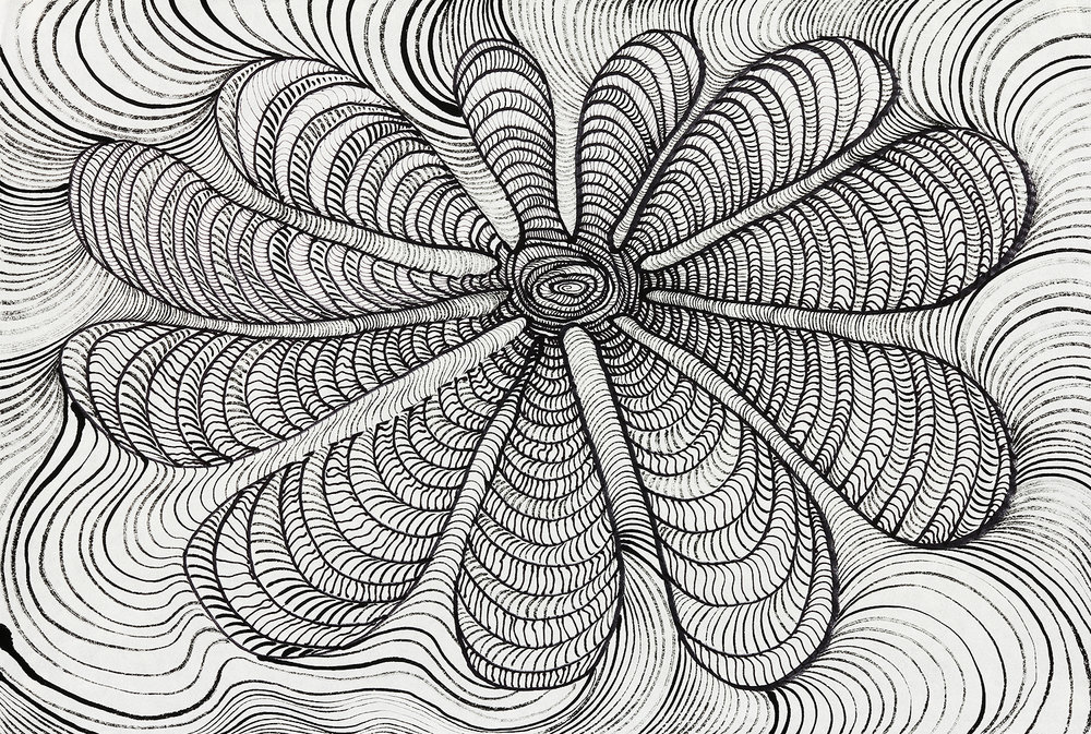 Eleven Petals  sumi ink and pen on paper  17x23in. 2016