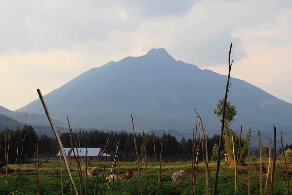 rwanda-2014_16.jpg