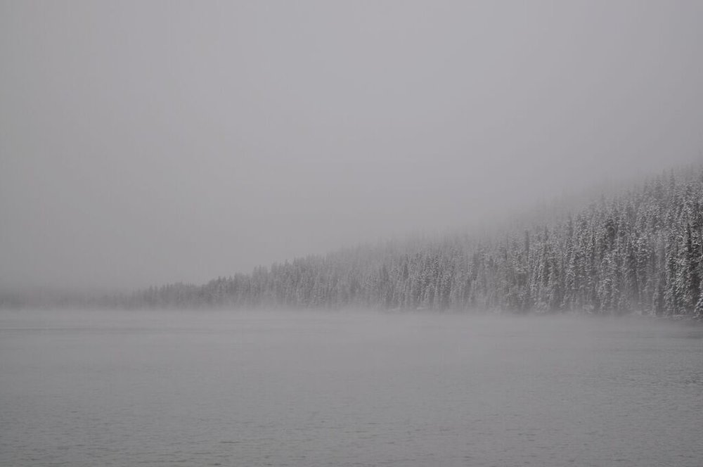 Snowy fog_Shannon Black.jpg