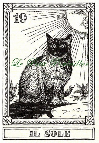 vintage_menegazzi_tarot_engraved_cat_fortune_telling_feline_cards_81a55e42.jpg